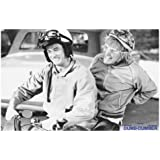 Amazon Com Dumb And Dumber Movie Harry And Lloyd On