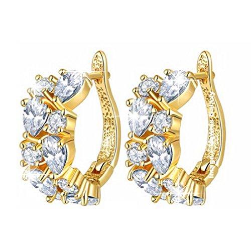 Shimmer Divine Sparkling Flowerets Vine Swiss Cubic Zirconia Plated Hoop Earrings for Women