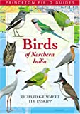 Birds of Northern India (Princeton Field Guides)