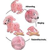 KateDy Electric Leash Dog Plush Toy Dog Tedder Dog Music Robot Dog Remote Children's Toys Pet Dog Walking Birthday Christams Gift