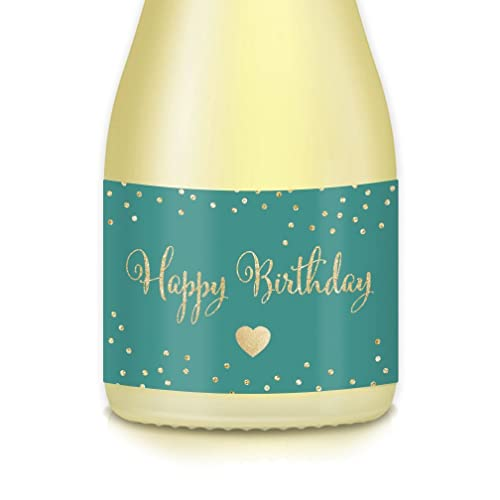 Womans Happy Birthday Gifts Present Ideas For Females Surprise Party Celebration 20 Count Mini Champagne Pony Bottle Or Wine Labels