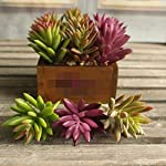Artificial-Flowers-Lotus-Plants-Real-Touch-Succulent-Grass-Desert-Artificial-Plants-Landscape-Arrangement-Garden-DecorGreen