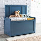 Blue Toy Box