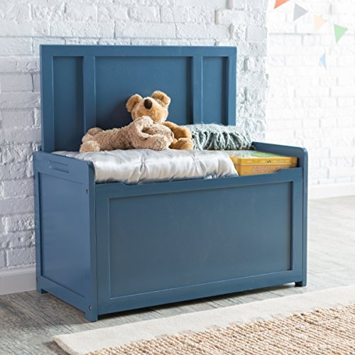 Blue Toy Box