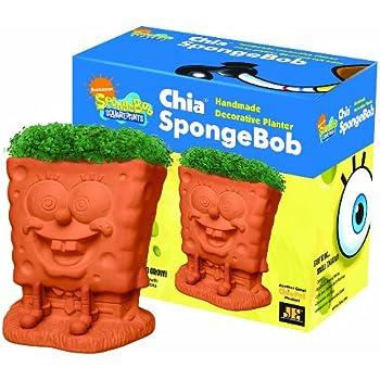Chia SpongeBob Handmade Decorative Planter