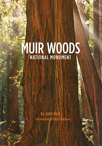 muir woods national monument - 1
