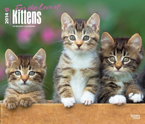 (For the Love of Kittens 2014 18-Month Calendar (Multilingual Edition))