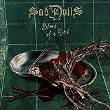 51AJM2421bL. SL160  - SadDoLLs - Blood of a Kind (Album Review)