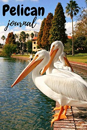 - Pelican Journal: Lovely Notebook / Diary, Unique Birds Gift For Kids And Adults (Lined, 6