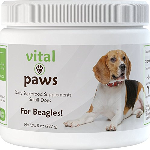 Vital Paws for Beagles | Daily Superfood Biscuits | Dog Multivitamins & Supplements | Contains Omega-3 Fish Oils, Turmeric, Probiotics, and More! (Best Food For Beagles)
