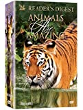 Animals Are Amazing (6 DVD's)