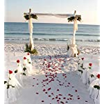 MXXGMYJ-2000pcs-Ivory-Rose-Petals-White-Rose-Wedding-Bouquets-Fake-Rose-Petals-Dried-Rose-Wedding-Bouquet-Artificial-Flowers-Wedding-Party-Decoration-Table-Confetti