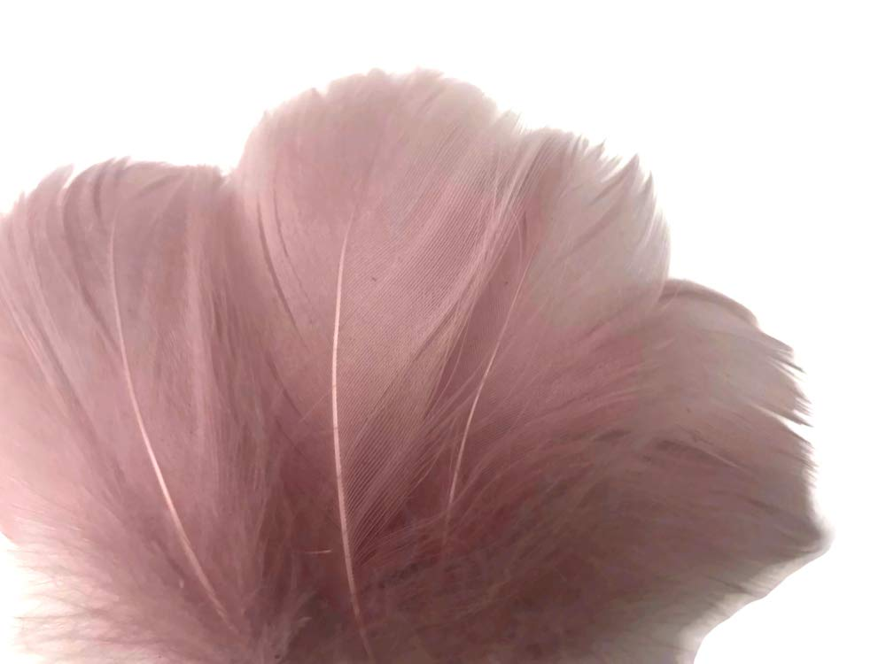 80 Black turkey feathers loose small body feathers plumage real feather 0.5 oz