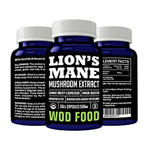 Lion's Mane Mushroom Extract Capsules Increase Neurogenesis, Reduce Anxiety, Enhance Neurological Connections - Nootropic for Enhancing Mental Performance by WOD Food