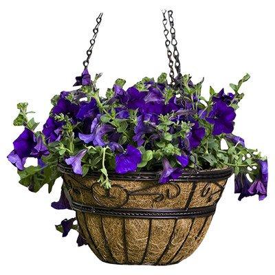 Round Hanging Basket - Cobraco Hanging Basket