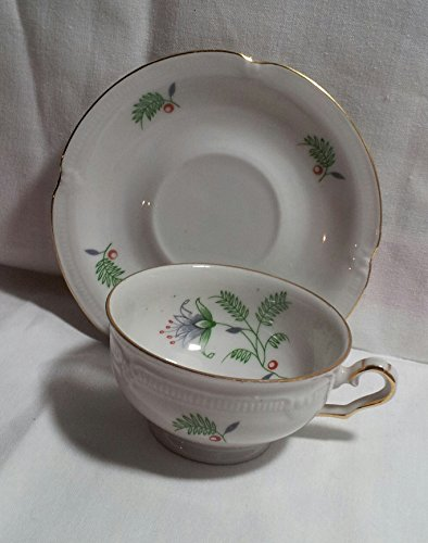 Germany Demitasse (Winterling - Bavaria Germany - 3389 B. Fern - Demitassse Tea Cup and Saucer)