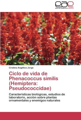 Descargar Libro Ciclo De Vida De Phenacoccus Similis Jorge Cristina Angélica