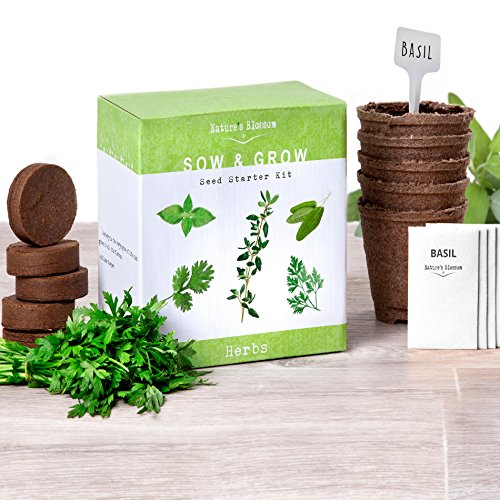 Grow 5 Herbs From Organic Seeds with Nature's Blossom's Herb Garden Starter Kit - Thyme, Basil, Cilantro, Parsley & Sage. A Complete Set W/ Everything a Gardener Needs to Grow Culinary Plants indoors