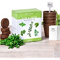 Nature's Blossom Herb Garden Kit - 5 Herbs To Grow From...
