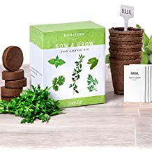 Grow 5 Herbs From Organic Seeds with Nature's Blossom Herb Garden Starter Kit - Fresh Thyme ; Basil ; Cilantro ; Parsley and Sage. Planters Set W/All a Gardener Needs for Growing Indoor Plants