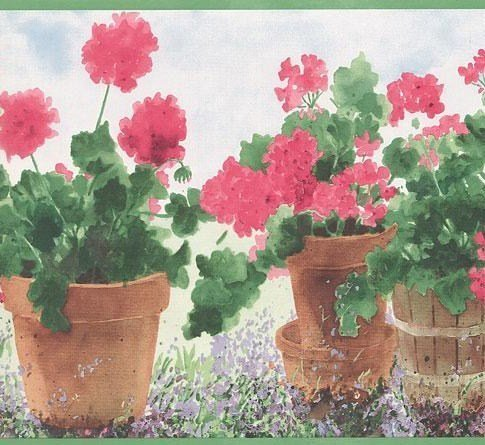 Wallpaper Border Watercolor Potted Geraniums on White with Green (Green Trim Wallpaper Border)