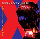 Why'd I Have to Fall in Love With You by Dimension X