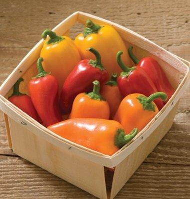David's Garden Seeds Pepper Specialty Lunchbox Mix SL3515A (Multi) 25 Organic (Sweet Bell Pepper Seeds)
