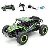 RC Cars High Speed Remote Control Truck 2.4Ghz 4CH Off Road RC Car Rock Off-Road Vehicle 1:16 Alloy Shell Monster Truck Rechargeable Buggy Vehicle (Green)