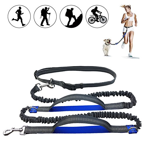 Retractable Hands Free Dog Leash with Dual Bungees, Free Control for Up to 150 lbs Large Dogs, Durable Dual-Handle Bungee Leash with Adjustable Waist Belt for Running with Your Pet, Jogging or Walking