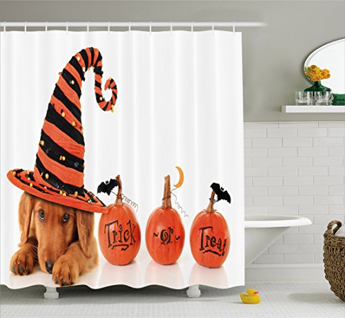 Halloween Shower Curtain by Ambesonne, Cute Puppy Wearing a Witch Hat Trick or Treat Little Bats Festive Funny, Fabric Bathroom Decor Set with Hooks, 70 Inches, Orange Black Brown