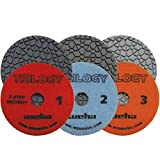Weha 4 Inch Trilogy 3 Step Dark Quartz Diamond Polishing Pads Wet/Dry Full Set