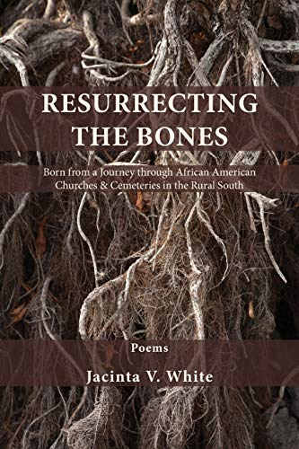 Resurrecting the Bones: Born from a Journey through African American Churches & Cemeteries in the Rural South