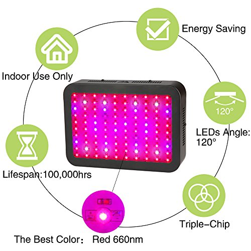 51AKGc5lOIL - 1000W LED Grow Light, Dimgogo Triple Chips Full Spectrum Grow Lamp with UV&IR for Greenhouse Hydroponic Indoor Plants Veg and Flower All Phases of Plant Growth (10W Leds)