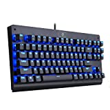 EagleTec KG040 Mechanical Gaming Keyboard Illuminated Blue Switches Cherry MX Equivalent Compact Keyboard Tenkeyless with 87 Keys for Windows PC Gamers (Blue LED Backlit)