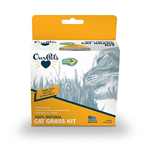 Ourpets Kitty Cat Growable Grass Kit ()