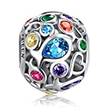 Rainbow Charm for Pandora Charm Bracelet, 925 Sterling Silver Openwork Beads Colorful Bead Charm with Skin-Friendly Fish Cubic Zircon Stone, Perfect for Bracelet Necklace FQ0001 …