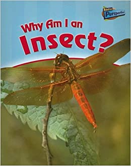 Why Am I an Insect? (Classifying Animals): Greg Pyers ...
