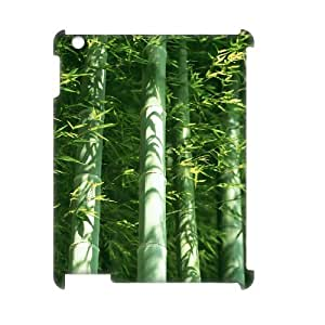ALICASE Diy Cover Custom Case Bamboo For IPad 2,3,4 [Pattern-1]
