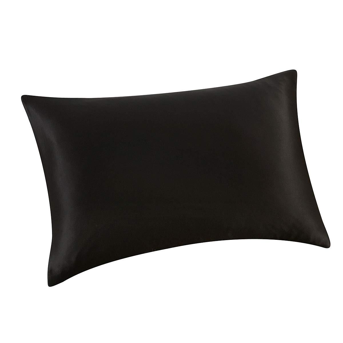 ALASKA BEAR 天然シルク枕カバー 低刺激性 25匁 900スレッドカウント マルベリーシルク クイーンサイズ 隠しファスナー付き Standard 20''x26'' ブラック AB-PC-25-Black-S Standard 20''x26'' ブラック B07DNVD1TV