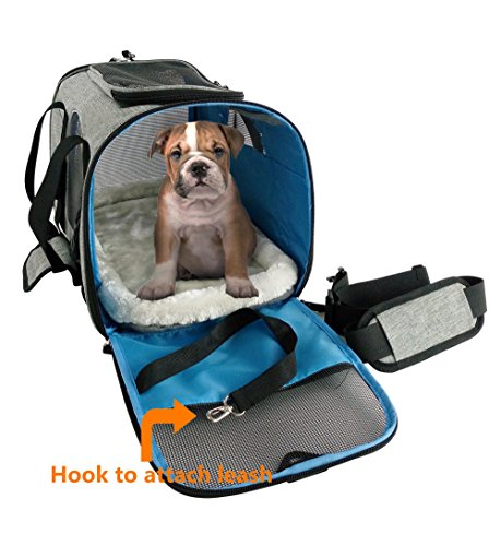 Travel peat dog cat carrier by Eugene's. New Generation of dog carriers Airline Approved Under Seat Compatible. dog cat pet puppy bag carrier for small pets. by Eugene's (Image #4)