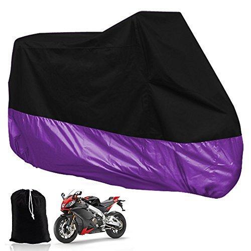 Purple Honda Motorcycles - 1