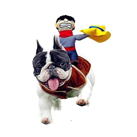 Cowboy Rider - Disfraz de Perro, Estilo Caballero con muñeca y ...