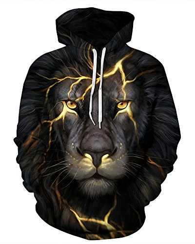 GLUDEAR Unisex Realistic 3D Digital Print Pullover Hoodie Hooded Sweatshirt,Crack Lion,L/XL ()