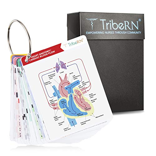 2019 PocketGuru Set by Tribe RN - 85 Scrub Pocket Sized Nurse Reference Cards - (Bonus Nursing Cheat Sheets) Perfect Nurse or Nursing Student Gifts - Studying and Clinical Rounds