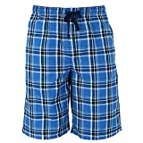 Hanes Men's Cotton Madras Drawstring Sleep Pajama Shorts, Large, Galapagos Blue