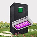 Hongruilite Full Spectrum 300W LED Grow Light +32''x32''x63'' 600D High Reflective Mylar Grow Tent with Observation Window and Metal Corner Indoor Hydroponic System Kits