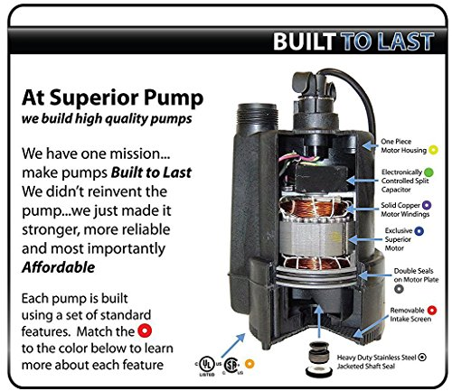 The 8 best utility pumps