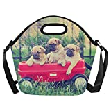 InterestPrint Large Insulated Lunch Tote Bag Funny Pug Dog Animals Reusable Neoprene Cooler, Vintage Red Wagon Portable Lunchbox Handbag with Shoulder Strap