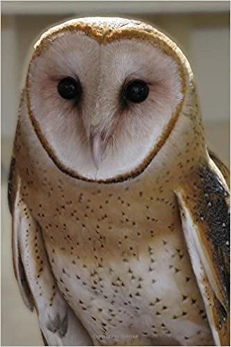 Cool British Barn Owl Bird Journal: 150 Page Lined Notebook