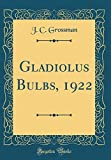 Amazon / Forgotten Books: Gladiolus Bulbs, 1922 Classic Reprint (J C Grossman)